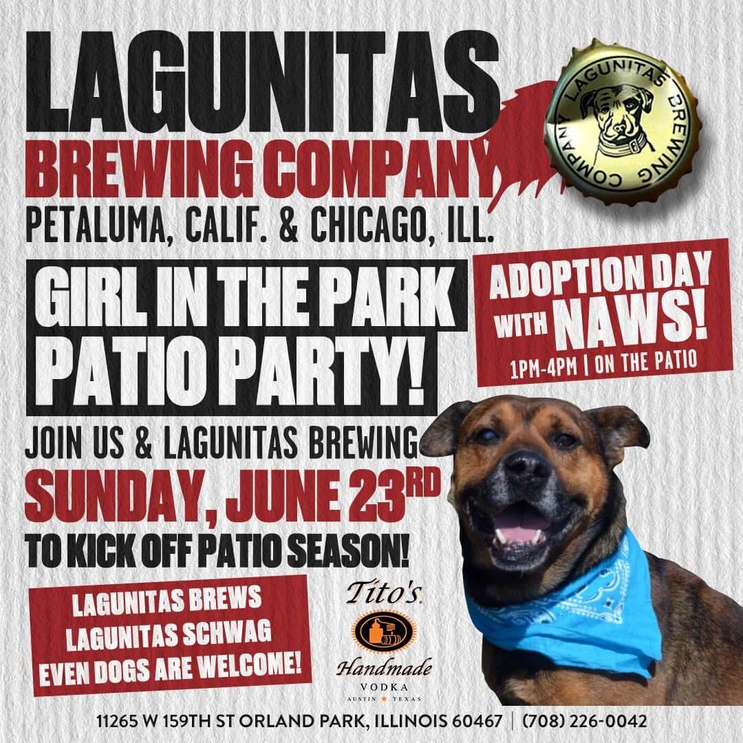 Lagunitas-Patio-Party-Social-update (1)